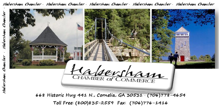 news from habersham county chamber of commerce. Black Bedroom Furniture Sets. Home Design Ideas