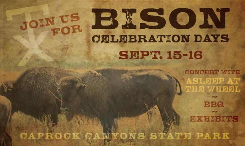 Bison days