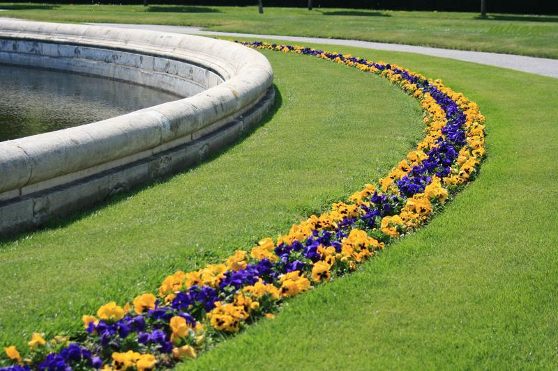 yard of flowers