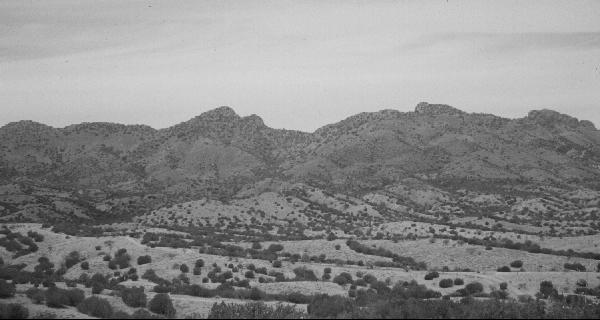 Santa Rita Mtns CA
