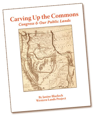 Cover, Carving Up the Commons
