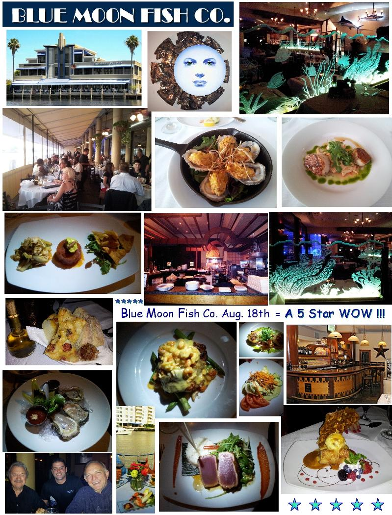 A w o w w e blue moon fish co miami spice spa for Blue moon fish company fort lauderdale