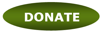 Donate button_green