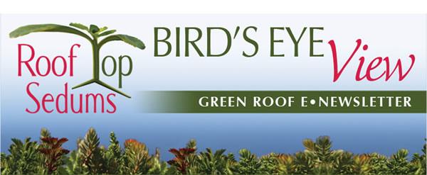 Roof Top Sedums Bird's Eye View - Green Roof E-Newsletter