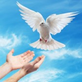Is Peace a Possibility