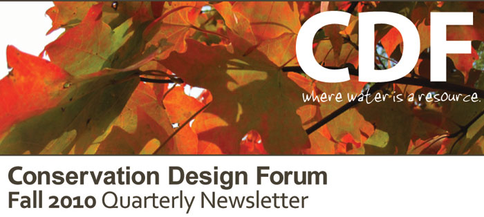 CDF Fall Quarterly Newsletter