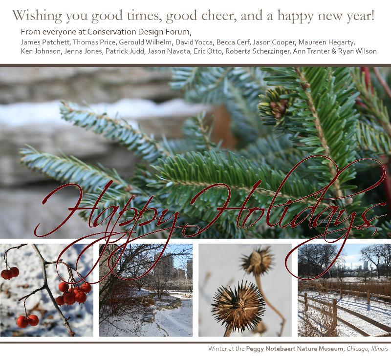 Happy Holidays from CDF!