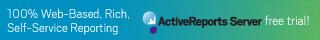 ActiveReports Server