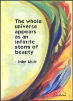 Whole universe poster - John Muir