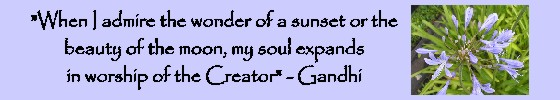 When I admire poster - Gandhi