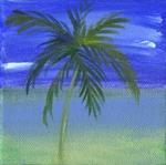 4x4 Original: Nokomis Palms