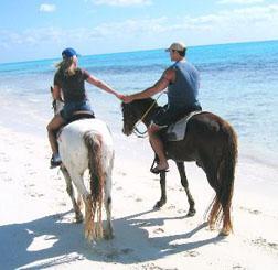 bahamas horseback riding
