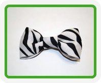 Bow Picture