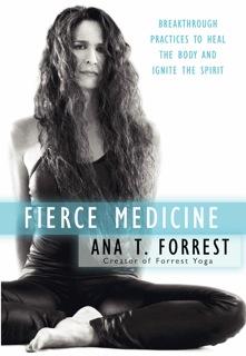 Fierce Medicine Cover