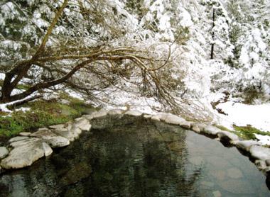 BB Meadow Pool