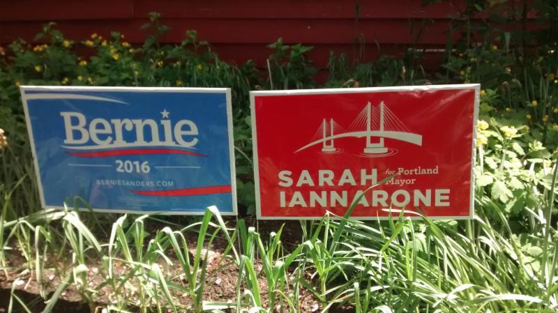 My Candidates