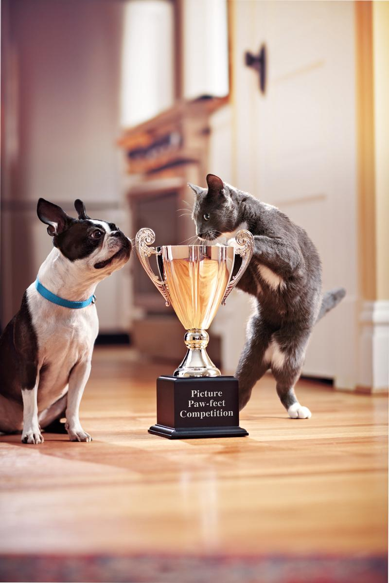 Pets with Trophy