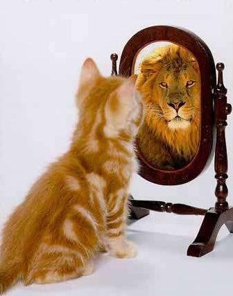 Macht&Selbstbewusstsein