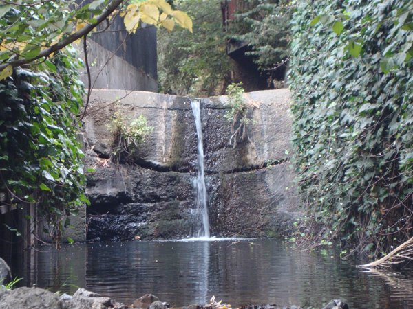 Barry Place Waterfall_Coroneos