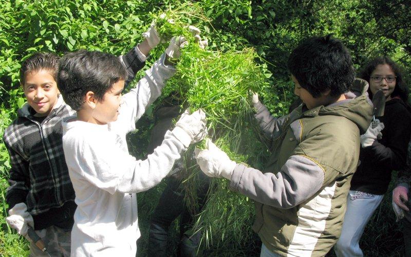 Manzanita SEED Field Trip
