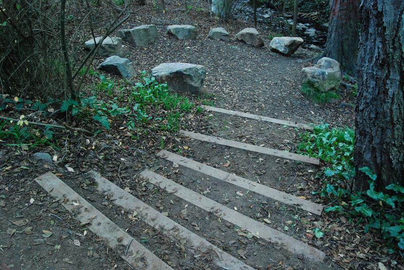 Dimond Park Trail Improvements