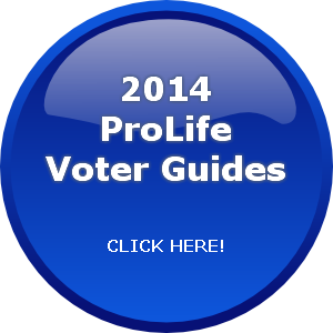 Voter Guide Button.png