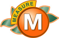 Measure M