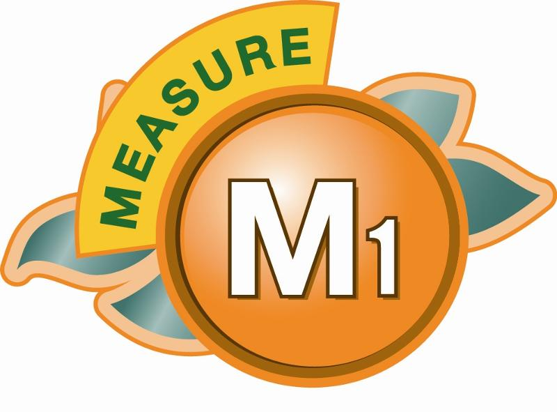 Measure M1 Logo