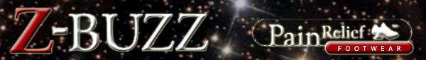 Z-Buzz Newsletter - January 2011