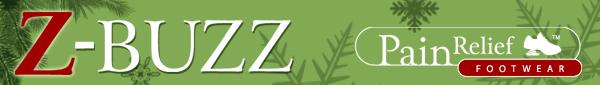 Z-Buzz Header December