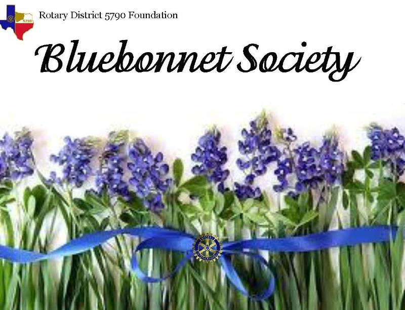 Bluebonnet Header