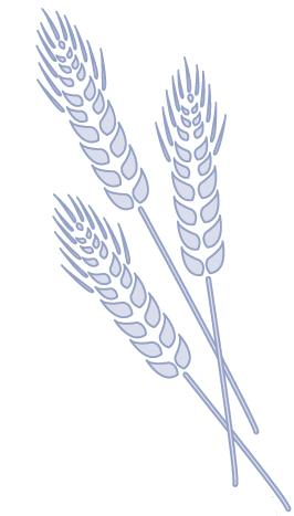 Shavuos in 60 Minutes