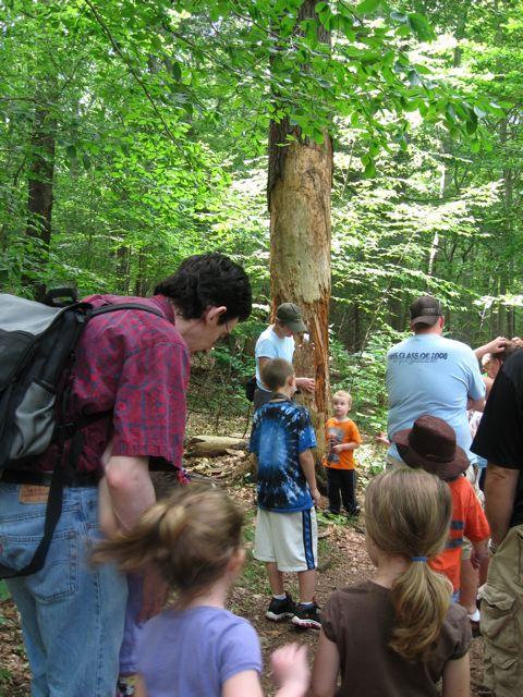 kids.hikers