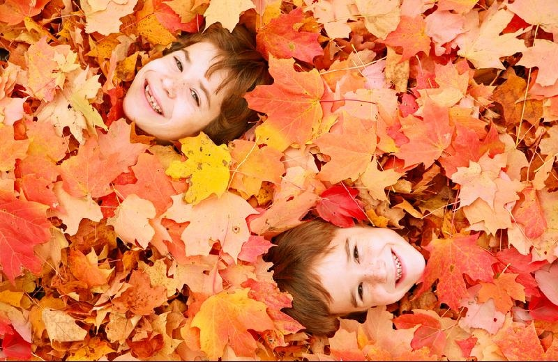 children in leaves