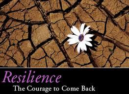 Reslience