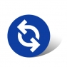 Strategy1 Consulting ICON