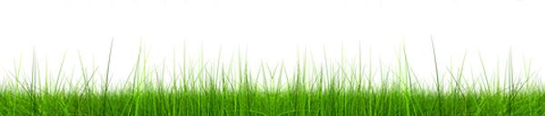 News From Energy Worldnet Inc