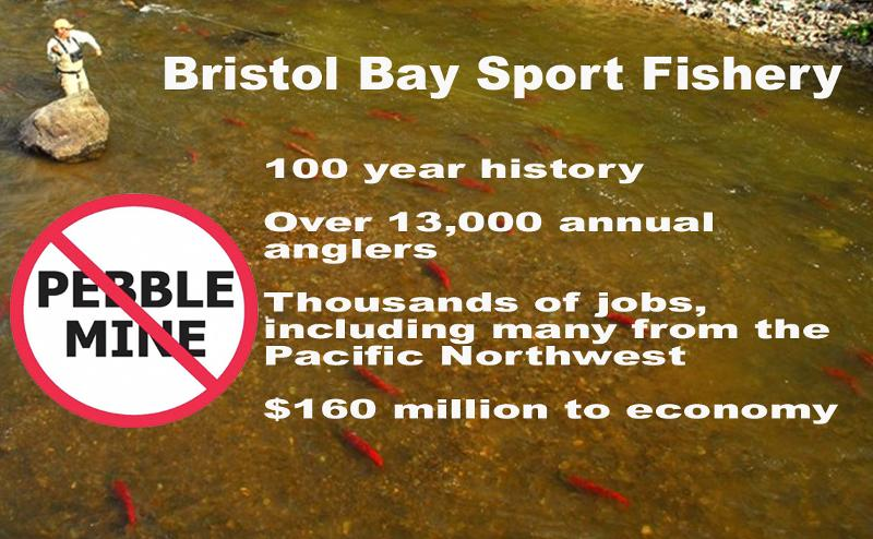 Pebble Mine sportfishing graphic