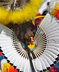 Aboriginal Headdress