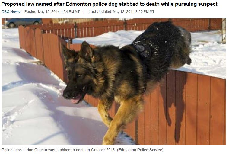 Edmonton Police Service Dog Stabbed to Death in October 2013
