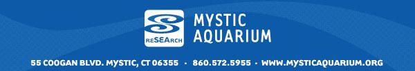 Progressive Charlestown Mystic Aquarium Hosts Foodie