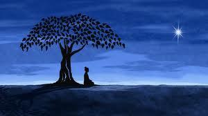 tree buddah