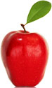 apple-sm.jpg