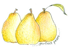 2144 - Perfect Pears