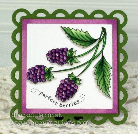 Perfect Berries
