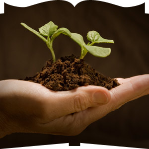 sowing & giving