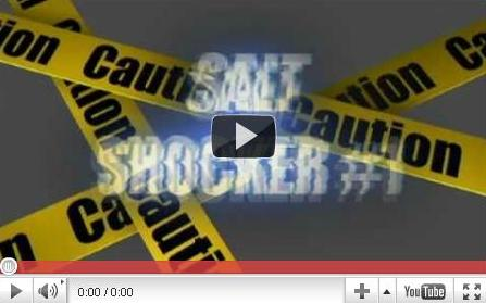 Salt video