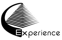 logo EXPERIENCE