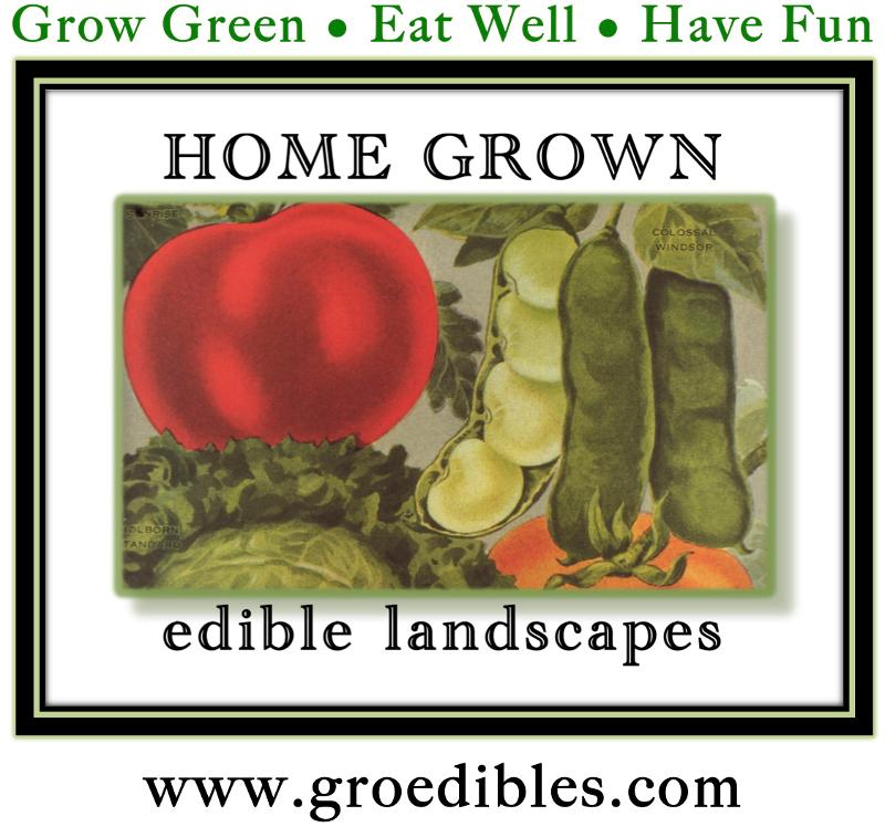 Home Grown Edible Landscapes