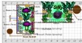 Arturo's garden plan